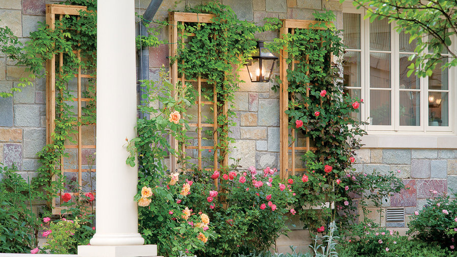 How to Build an Elegant Wall-Attached Trellis