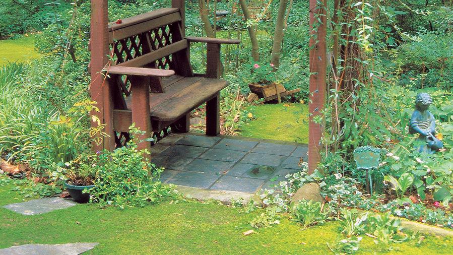 Shady arbor bench
