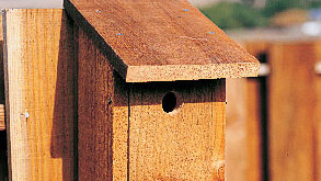 Shed-roof birdhouse<br />