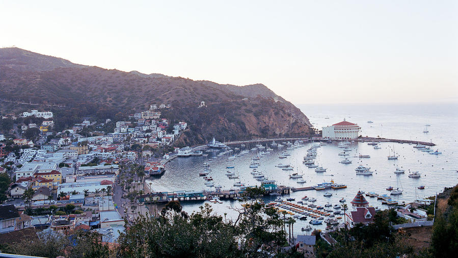 Catalina view