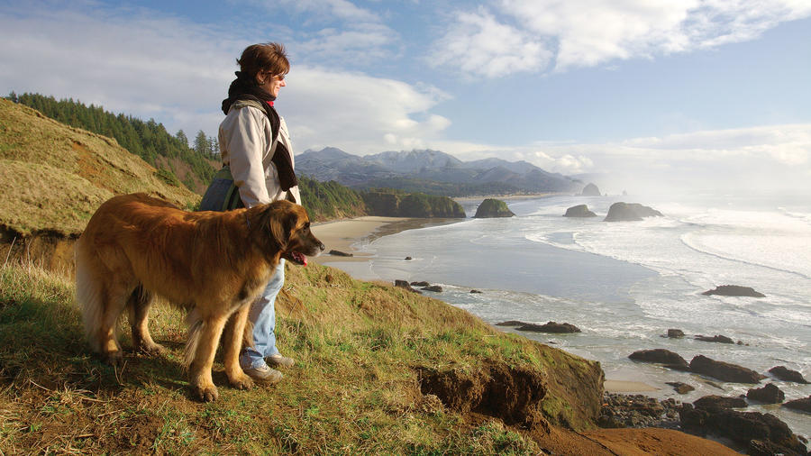 10 dog-friendly escapes