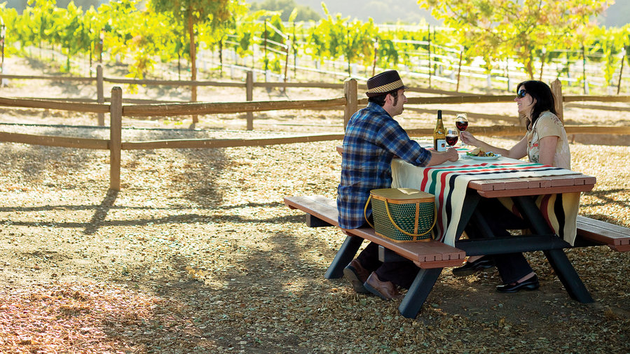Couple sitting in picnic table under a tree in Monterey wine country