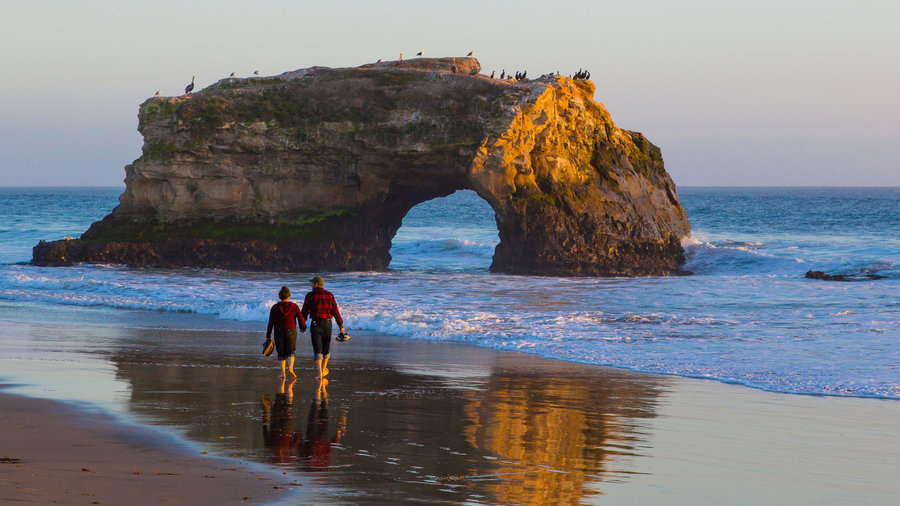 Best Nature Excursions During Winter In California