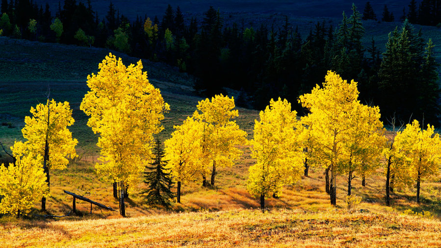 Top 18 Spots for Fall Color