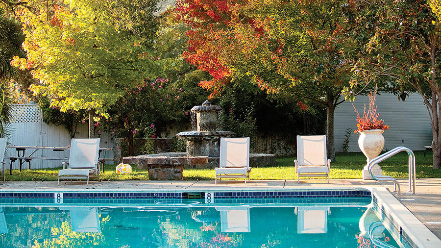 Pool and trees with fall foliage in Ukiah, California