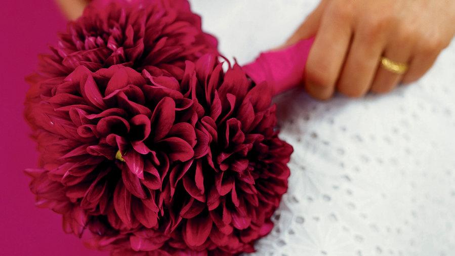 Grow a bouquet of dahlias