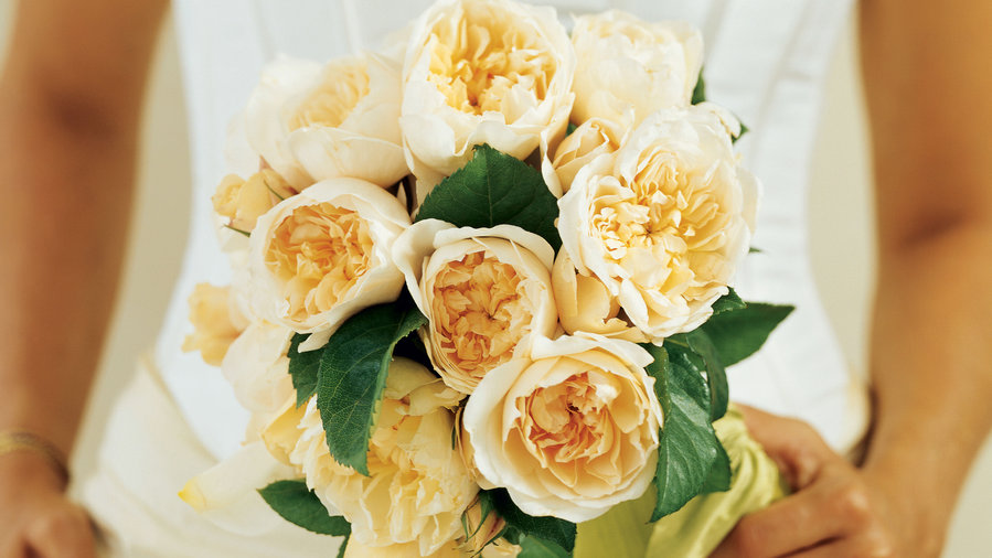 A bouquet of David Austin English roses