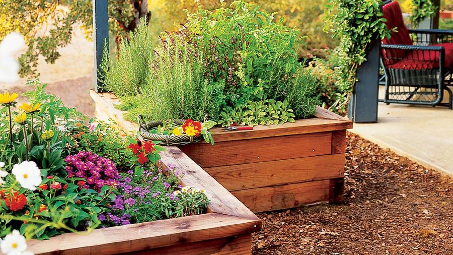 Raised-box herb garden
