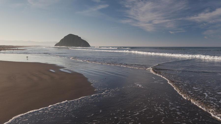 dog-friendly morro bay reach rock formation