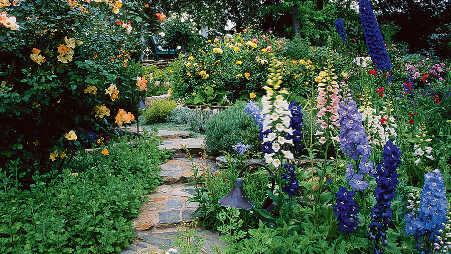 how to grow a cottage garden sunset magazine rh sunset com cottage garden projects magazine cottage garden projects magazine