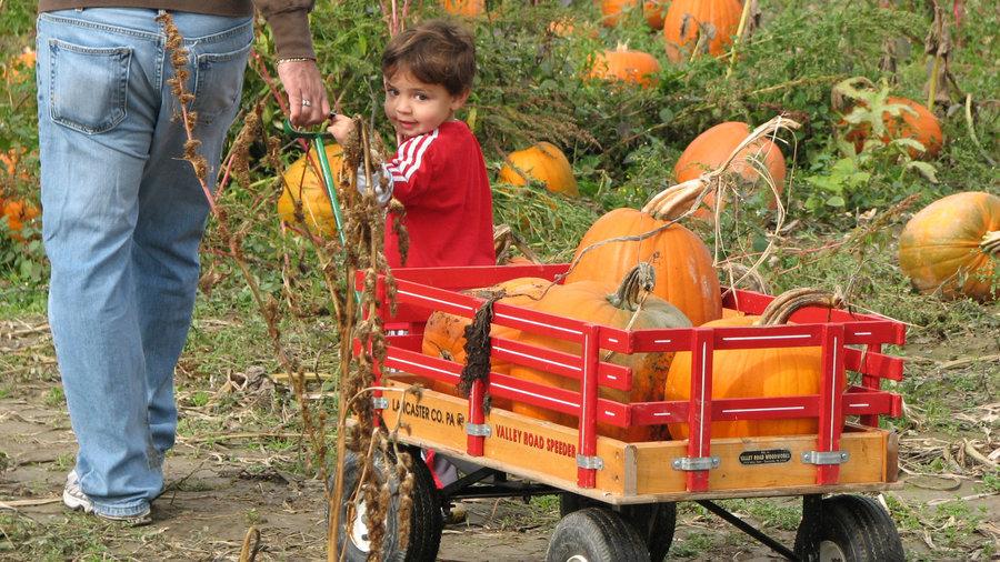 Craven Farm Fall Festival, Snohomish, WA