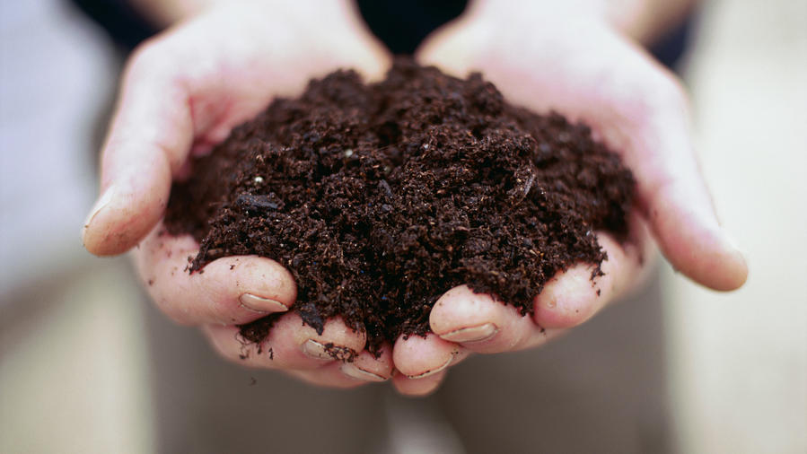 Care for Compost