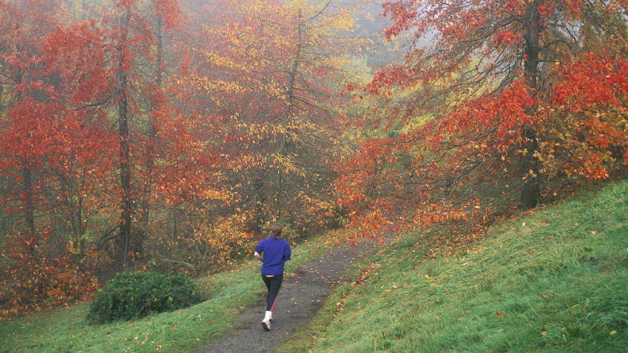 Woman running through Wildwood Trail in Portland, one of the great fall hikes in the West
