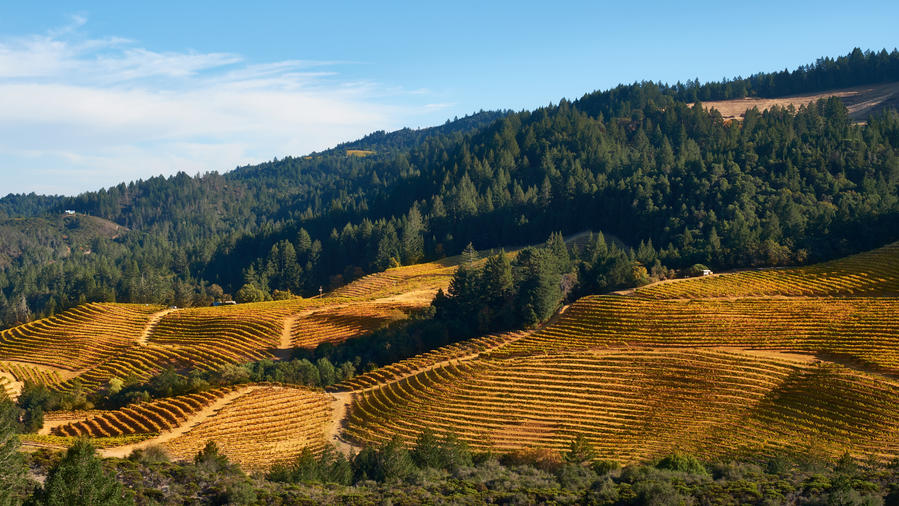 2 Superb Napa Valley Road Trips You Can Take Now