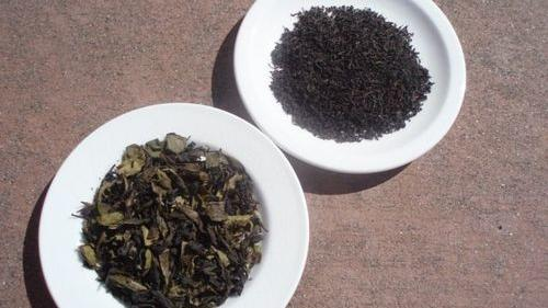 Team Tea: The green and the black
