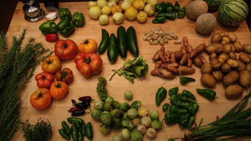 Harvest in the test garden