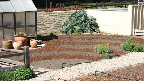 Our backyard farm fills in
