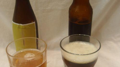 Beer tasting notes: Our homebrews haven't fizz-led out