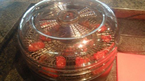Dehydrated tomatoes, part 2