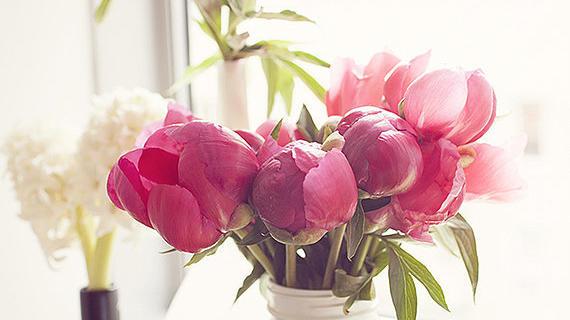 Photo by Raquel Bianca via 100 Layer Cake | Courtesy of CasaSugar.com
