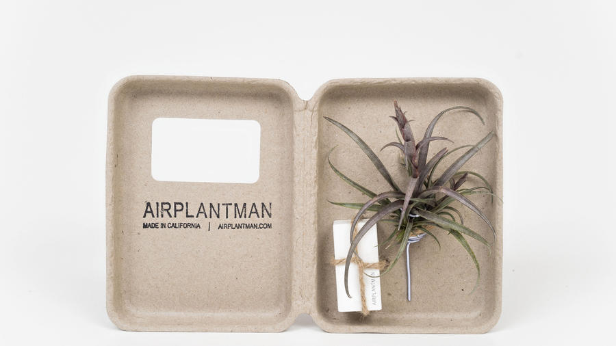 5 Stocking Stuffers for Plant Lovers