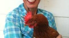 The Chicken Sitter