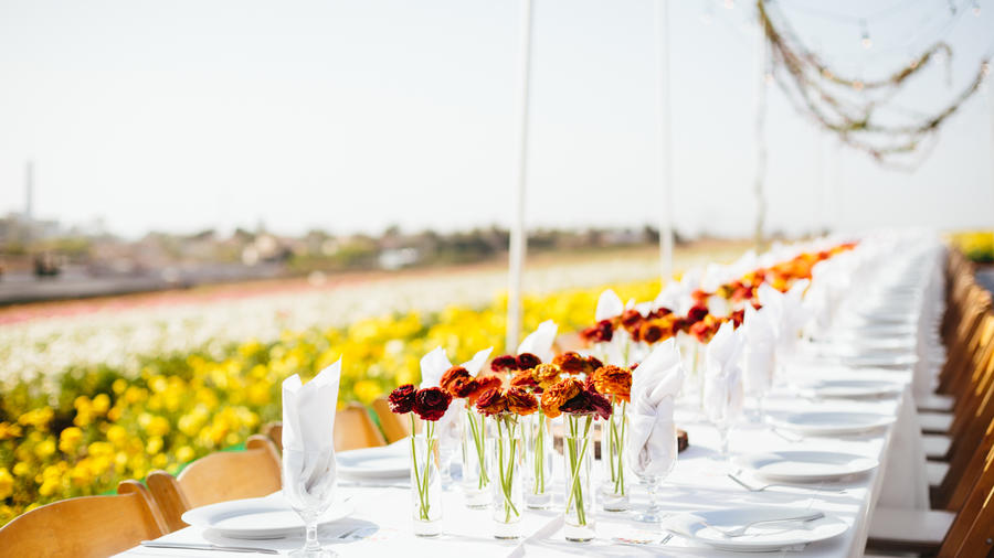 The Field to Vase Dinner, situated in the heart of The Flower Fields in Carlsbad, Calif., on April 15th. (c) Jodee Debes photography