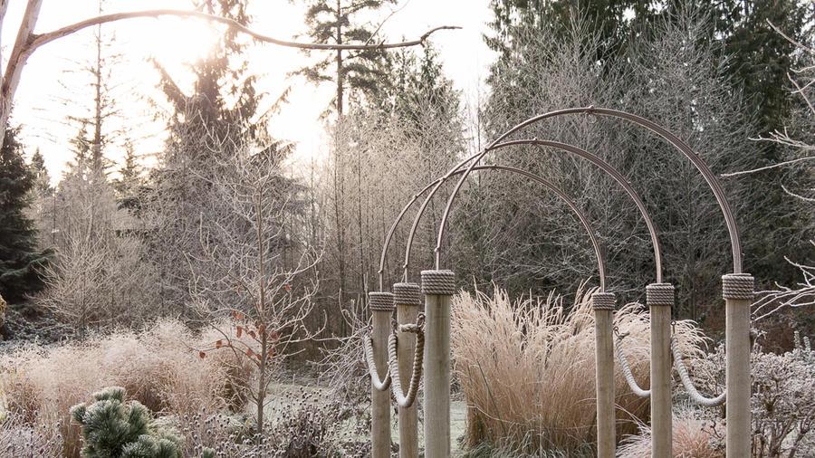 Planting Ideas: Frosty Foliage