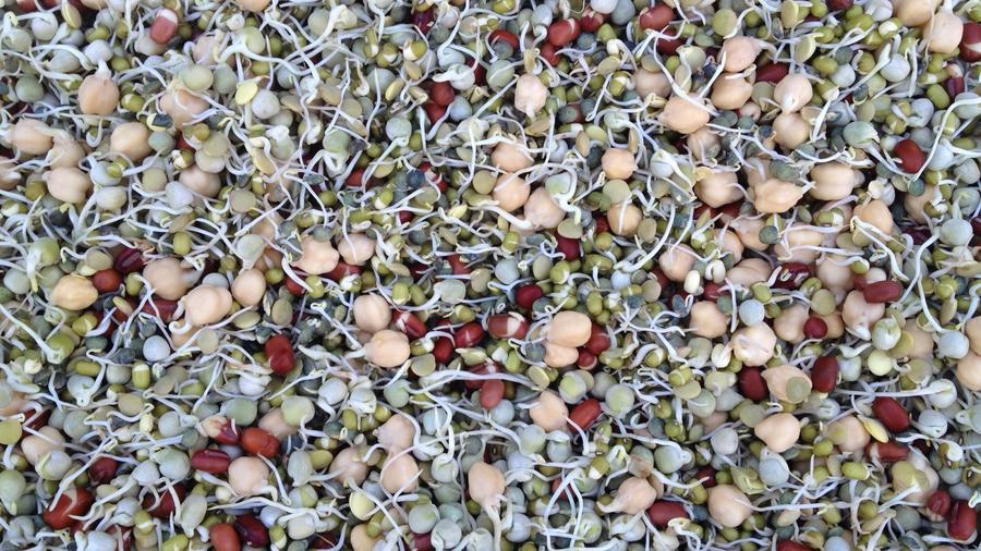 garbanzo & seeds mix