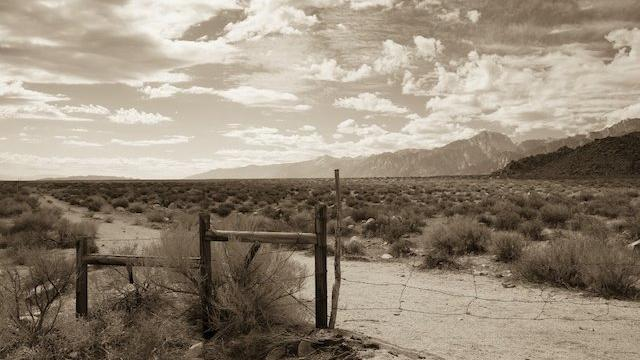 Owens Valley. Photograph by Thomas J. Story