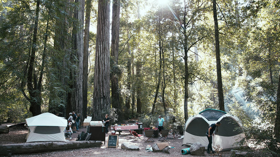 The Camp Sunset campsite, in Big Basin Redwoods State Park, CA. (Photo by Tom Story.)