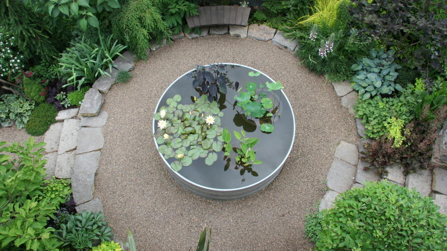 New Guest Blogger: Rebecca Sams from Mosaic Gardens