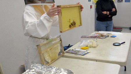 Honey bees make learning sweet for San Carlos first graders