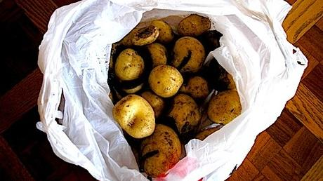 What's for Dinner? Beat-Up Potatoes