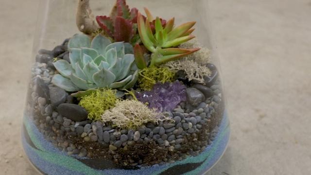 How To Make A Sand Terrarium Sunset Magazine