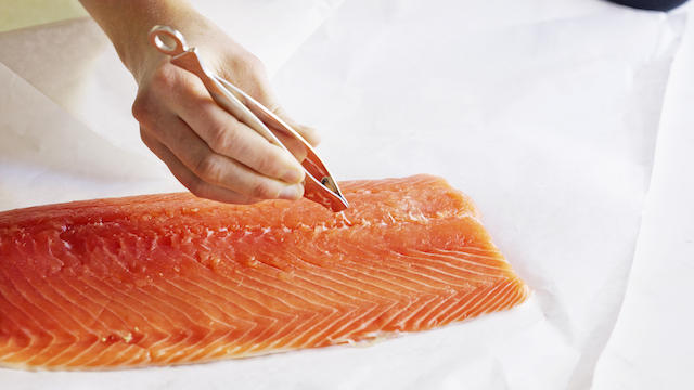 How to bone a salmon with salmon tweezers. Photo by Annabelle Breakey