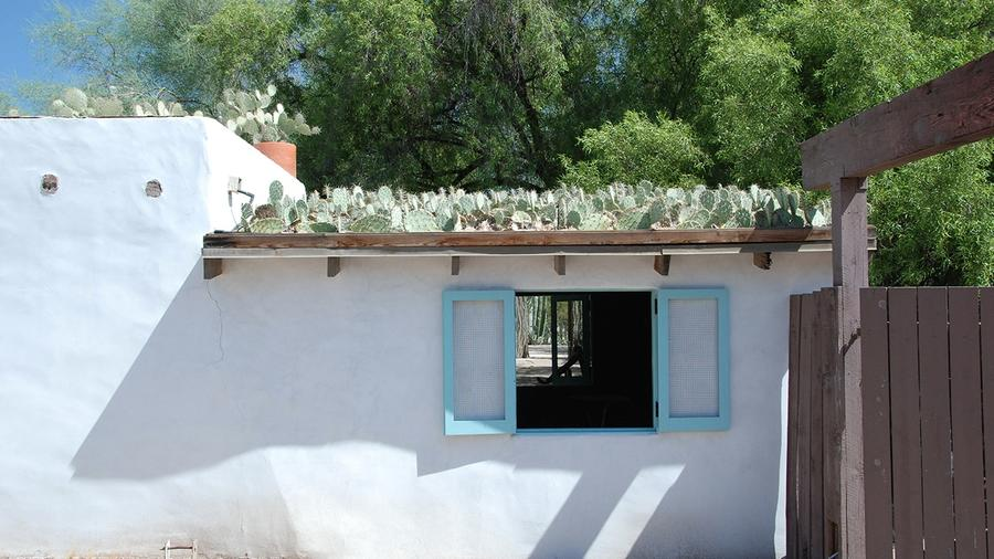 A Roof Made from Cactus Pads