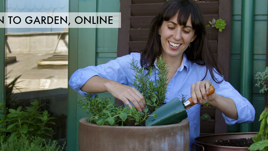 Discount: Save 10% on Edible Container Gardening Class