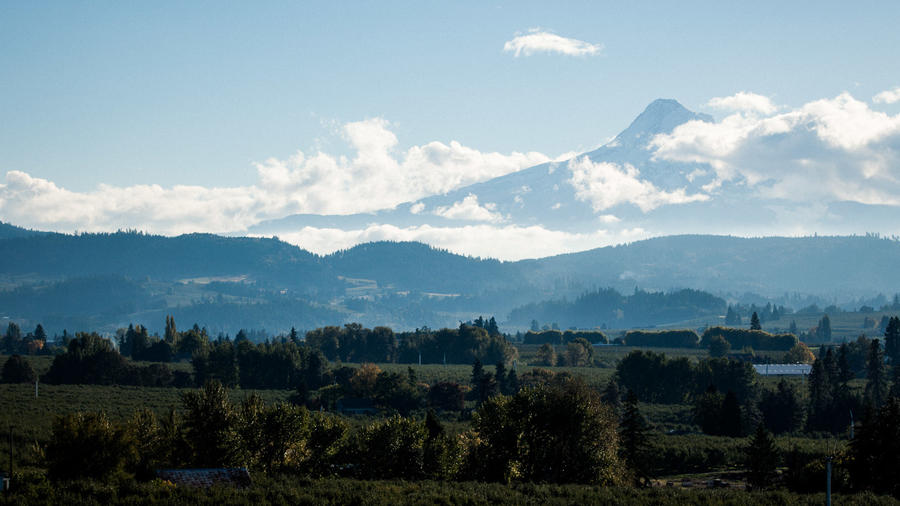 Where to Go This Weekend: Hood River, OR