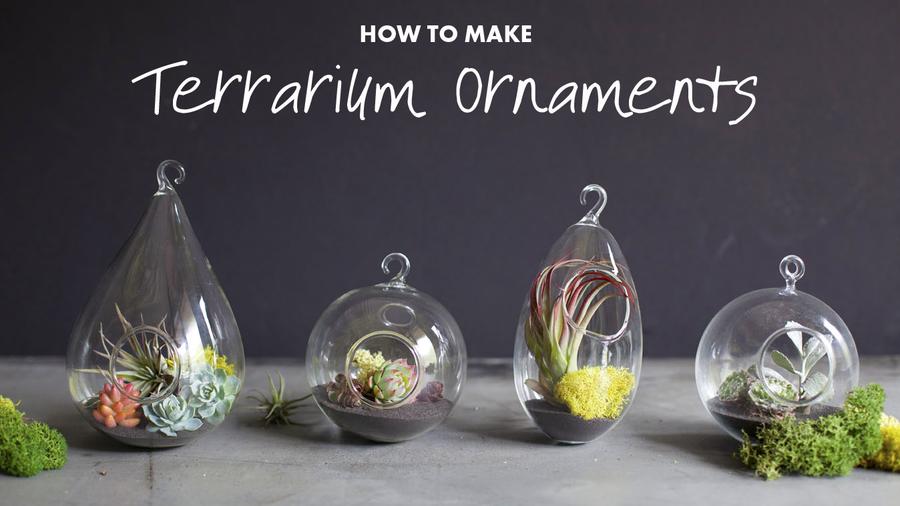 Terrarium ornaments_opener2
