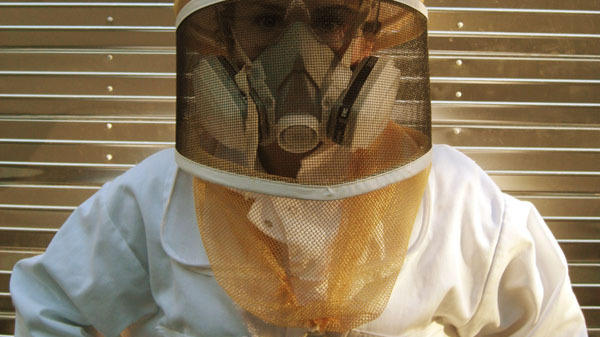 Treating bees