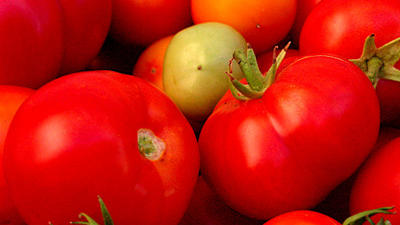 Perfect pairings: Tomatoes and … tuna, beets, chickpeas, mint …