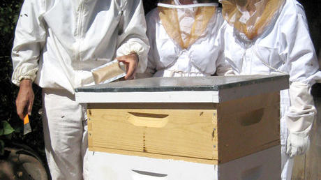 A beekeeper visit and a mite trap