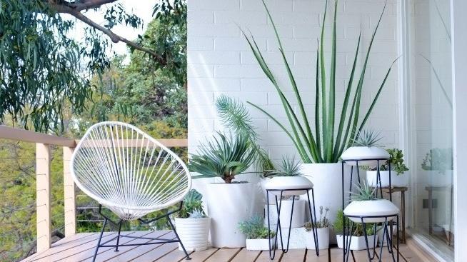 Courtesy of Gardenista.com