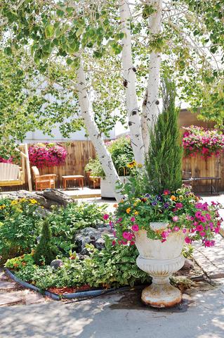 Experience Tagawa Gardens - Sunset Magazine