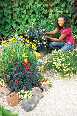 How To Design A Hot Color Flower Garden