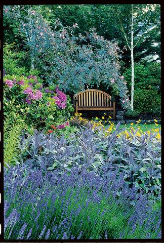 Guide to cottage gardening sunset magazine workwithnaturefo