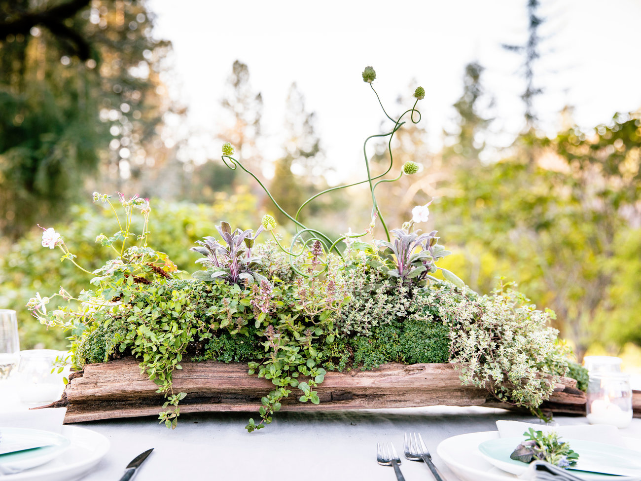 How to Set the Mood for a Chic Garden Party
