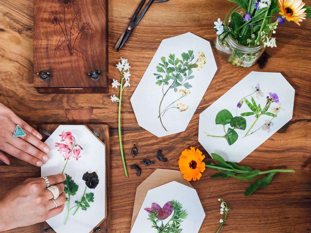 Great Gifts for Gardeners - Sunset Magazine