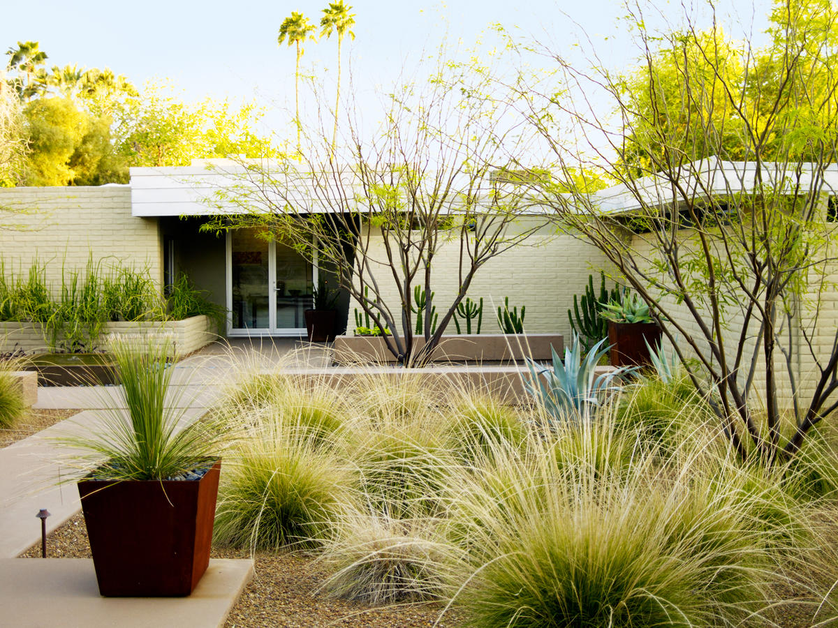 Landscape For Front Yard Ideas Part - 26: 4 Essential Desert Landscaping Ideas. Going Lawn-free: Desert Front Yard  Facelift